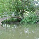 Jardines de verano en Inglaterra