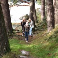 Excursiones Dublín Summer Camp