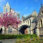 Festivales de otoño en Cambridge y Dublín